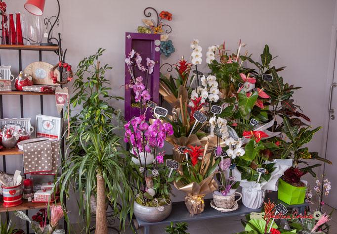 26 Fleurs et Passion, Véronique CONSTANT, Avenue de la Confluence, 47160 DAMAZAN Reproduction interdite - Tous droits réservés © Christian Coulais