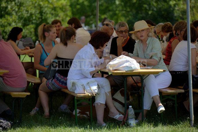 """""""Le public recherche l'ombre"""" Festival JAZZ360 2014, Mil&Zim Jazz, château Lestange, Quinsac. 08/06/2014"""