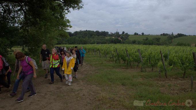 Festival JAZZ360 2015, randonnée pédestre, Château Brethous, Camblanes-et-Meynac. 14/06/2015