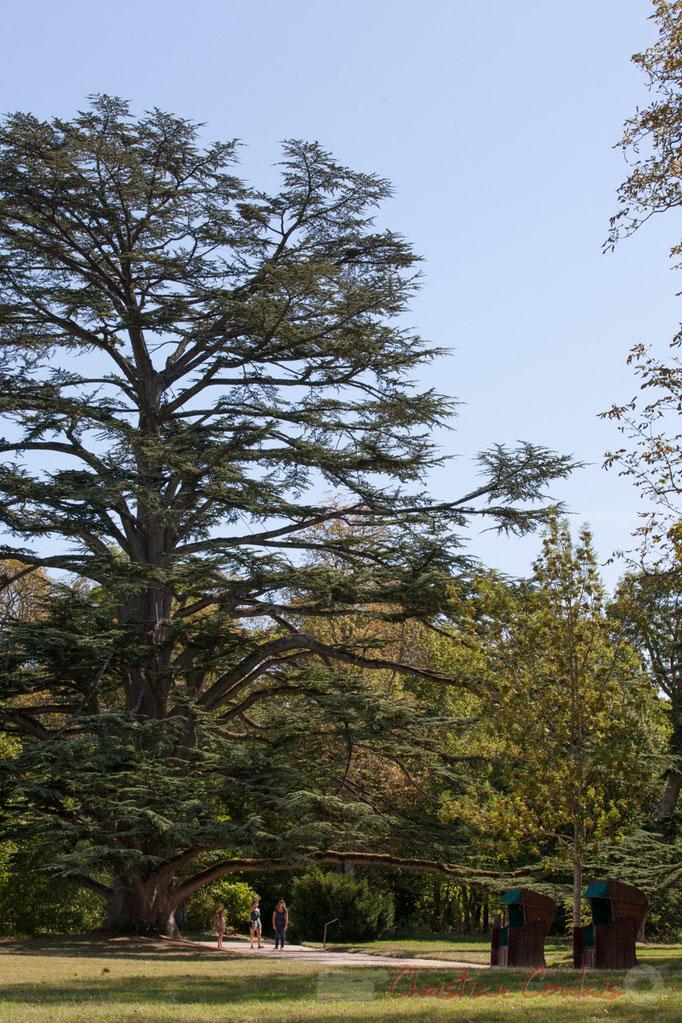 1884-1888 Henri Duchêne architecte paysagiste créait le parc paysager, Domaine de Chaumont-sur-Loire, Loir-et-Cher, Région Centre-Val-de-Loire. Mercredi 26 août 2015. Photographie © Christian Coulais