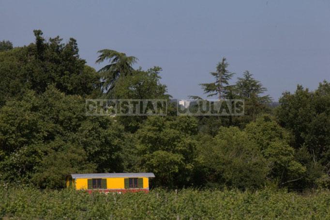 Depuis le Château Lestange; Akoda Quintet, Festival JAZZ360 2014, Quinsac. 08/06/2014