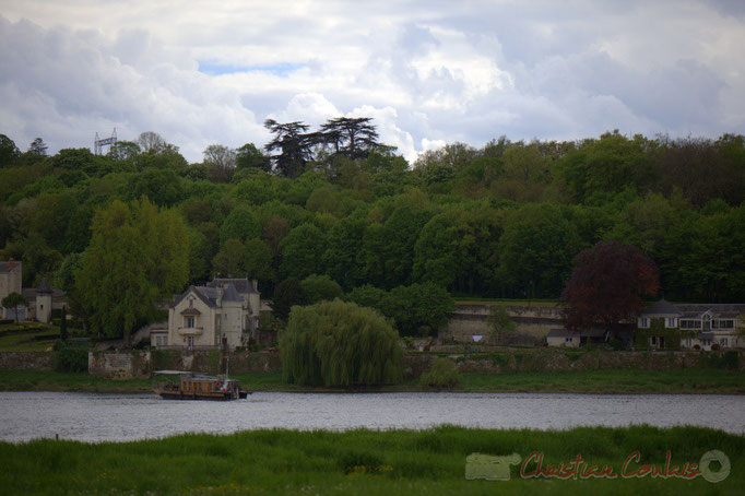 Candes-Saint-Martin, Indre-et-Loire