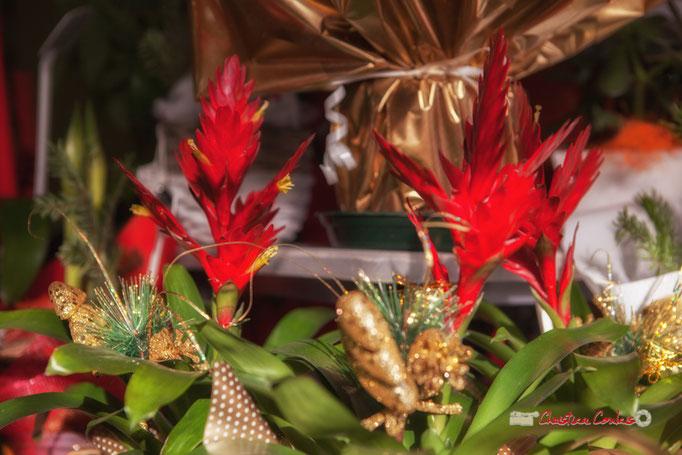 1 Fleurs et Passion, Véronique CONSTANT, Avenue de la Confluence, 47160 DAMAZAN
