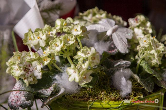 3 Fleurs et Passion, Véronique CONSTANT, Avenue de la Confluence, 47160 DAMAZAN Reproduction interdite - Tous droits réservés © Christian Coulais