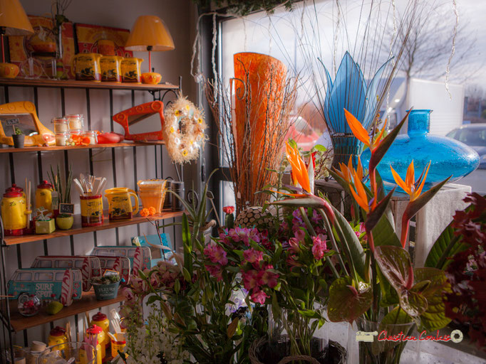 7 Fleurs et Passion, Véronique CONSTANT, Avenue de la Confluence, 47160 DAMAZAN Reproduction interdite - Tous droits réservés © Christian Coulais