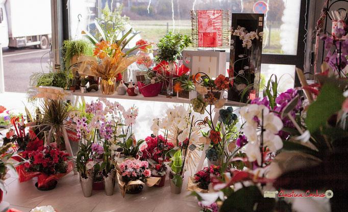 11 Fleurs et Passion, Véronique CONSTANT, Avenue de la Confluence, 47160 DAMAZAN Reproduction interdite - Tous droits réservés © Christian Coulais