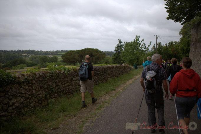 Festival JAZZ360 2015, randonnée pédestre, chemin de la chaussée, Camblanes-et-Meynac. 14/06/2015