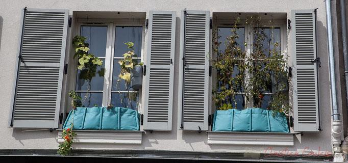 Rue du Faubourg Saint-Antoine, Paris 11ème arrondissement