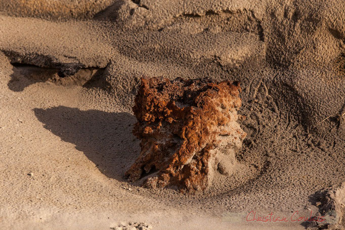 """Alios encerclé"". Biscarrosse océan, plage du Vivier, Landes. 21 février 2016"