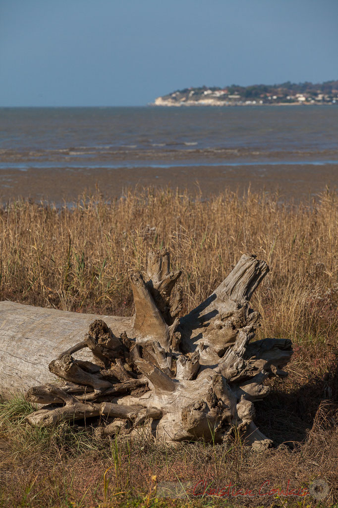 Talmont-sur-Gironde, Meschers au fond