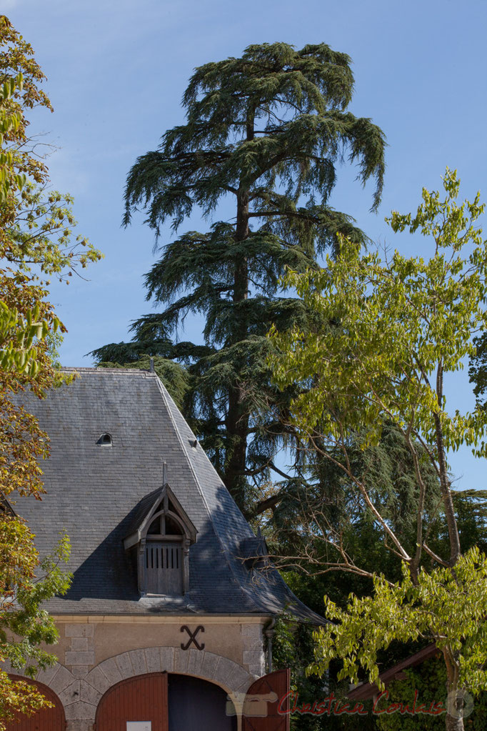Grange aux abeilles et parc historique, Domaine de Chaumont-sur-Loire, Loir-et-Cher, Région Centre-Val-de-Loire. Mercredi 26 août 2015. Photographie © Christian Coulais