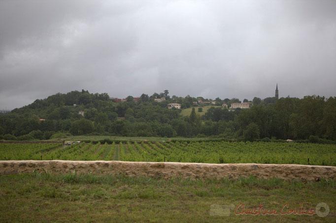Face au Château Lestange, Camblanes-et-Meynac