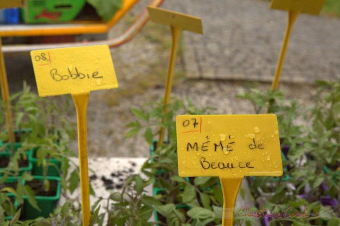 """Manifestation """"Nature et petites bêtes"""", avec l'association Jardins de tomates, Cénac"""