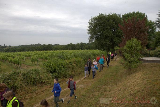 Festival JAZZ360 2015, randonnée pédestre, chemin départemental, Cénac. 14/06/2015