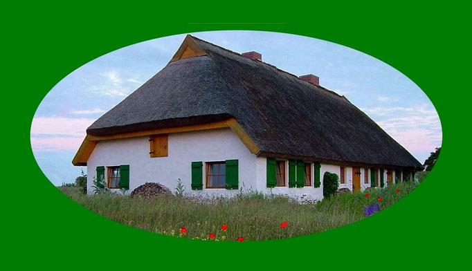 fischerhaus nordost