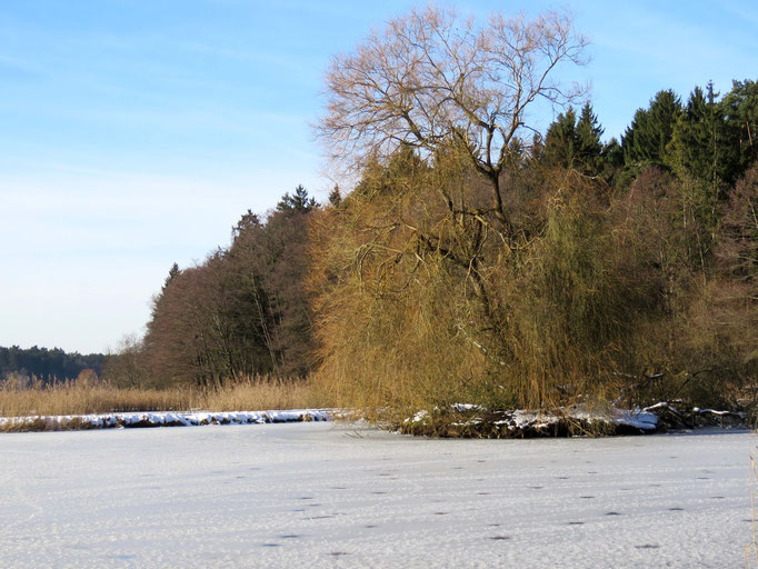 Hallertau, Bayern, 6. Januar 2015