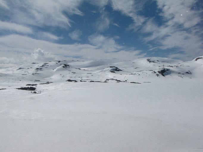 Landschaft auf unserer Zugfahrt von Bergen nach Oslo//Landscape on our train trip from Bergen to Oslo