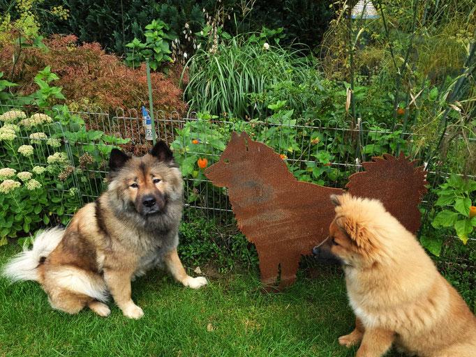 Yuna und Raya mit den Eurasier-Kumpel aus Stahl