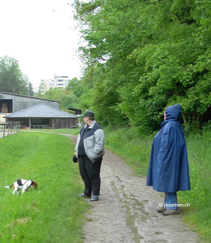 Einfarbige Pelerine beim Hundespaziergang (Kundenfoto)