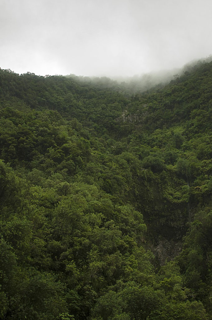Sous le nuage - Île de la Réunion - Février 2016.