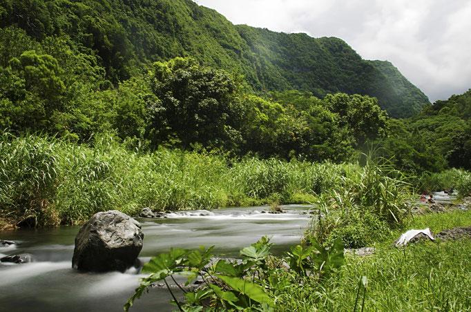 Plénitude -  Île de la Réunion - Février 2016.