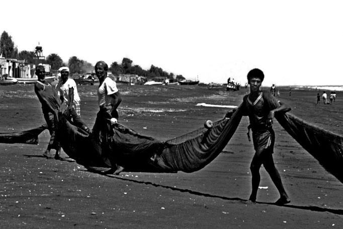Einholen eines Schleppnetzes, Sohar (Al Batinah North)