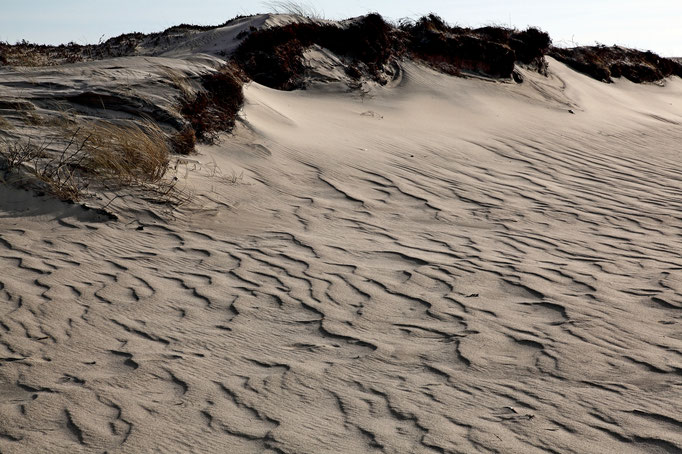 Ausläufer einer Stranddünen