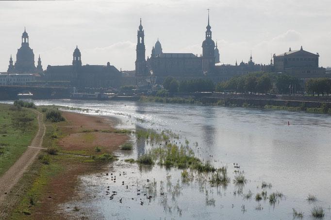 DD_Morgendunst & Elbe