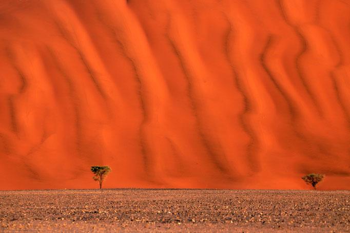 Yvonne Herzog, Sossusvlei - Namibia