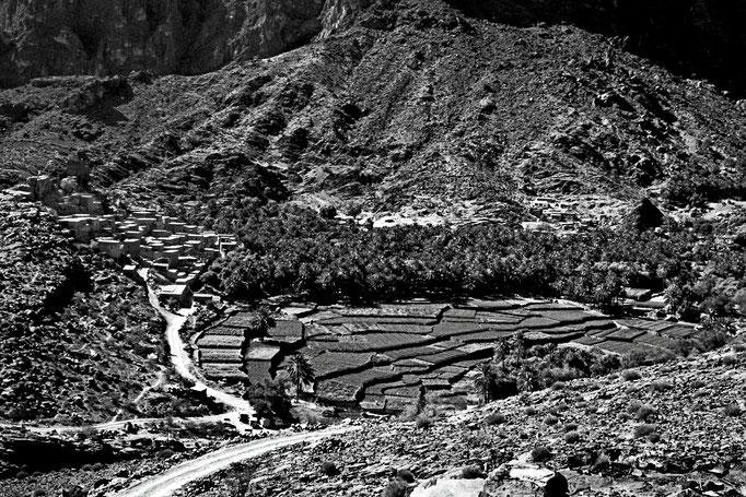 Terrassenfelder im Wadi Bani Awf (Al Batinah South)