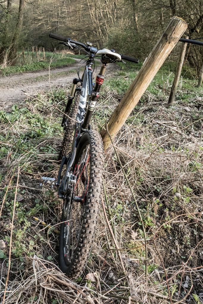 Die Mosel von der Eifel und dem Hunsrück umgeben - auch ein top Mountain-Bike Terrain - Unterkunft Brauneberg