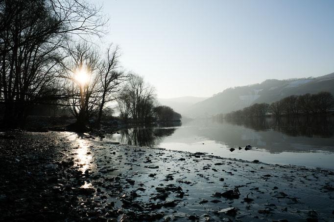 Mosel bei Brauneberg im Winter - Ferienwohnung Brauneberg