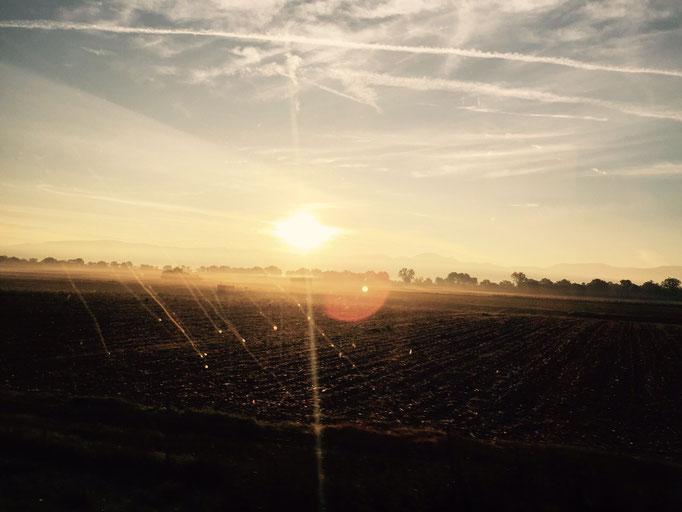 ... die Gnomen reiten in den Sonnenaufgang in das rust-ikale Abenteuer ...
