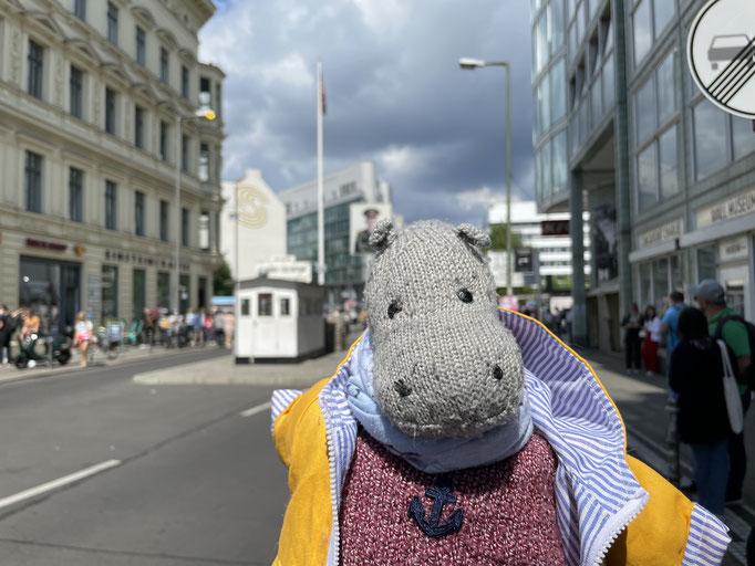 Teddy Tour Berlin - August 2021