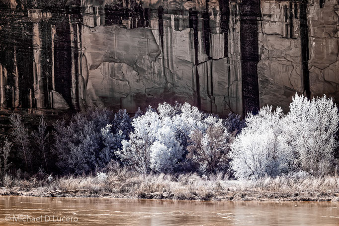 Cliff Series, Dinosaur NM, Utah