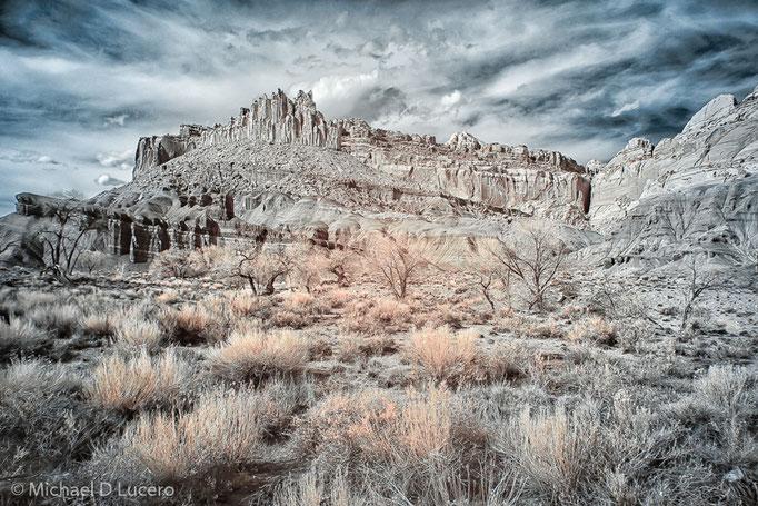 """""""Desert Solitude"""", Capitol Reef National Park, Utah"""