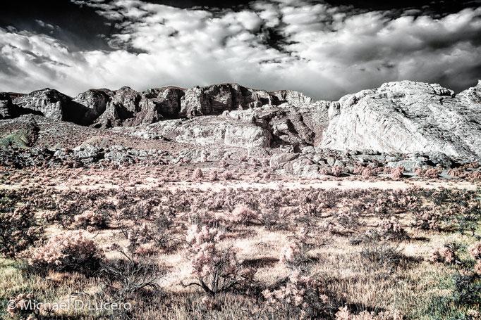Dinosaur NM, Utah