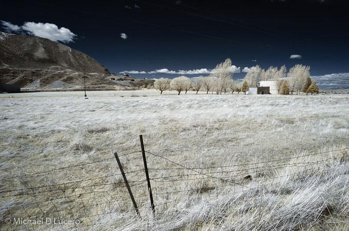 Field near Spanish Fork, Utah