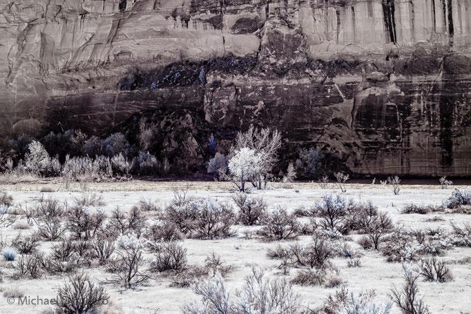 Cliff Series, Dinosaur National Monument, Utah