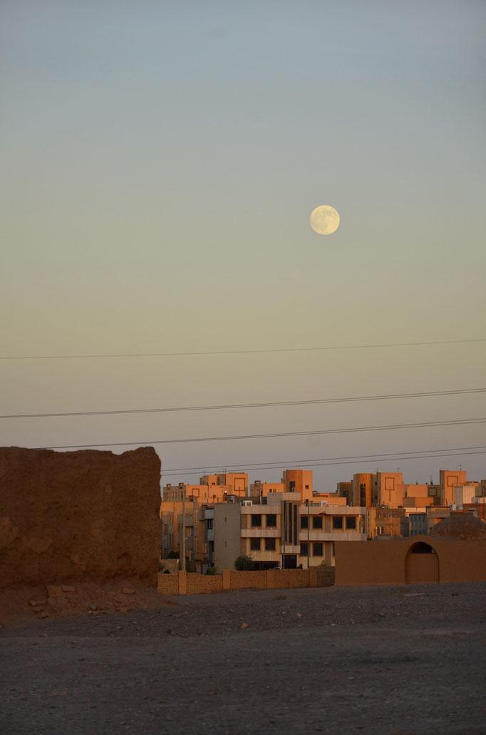 Nikon d7000 | 105mm | Yazd, Iran | 2016