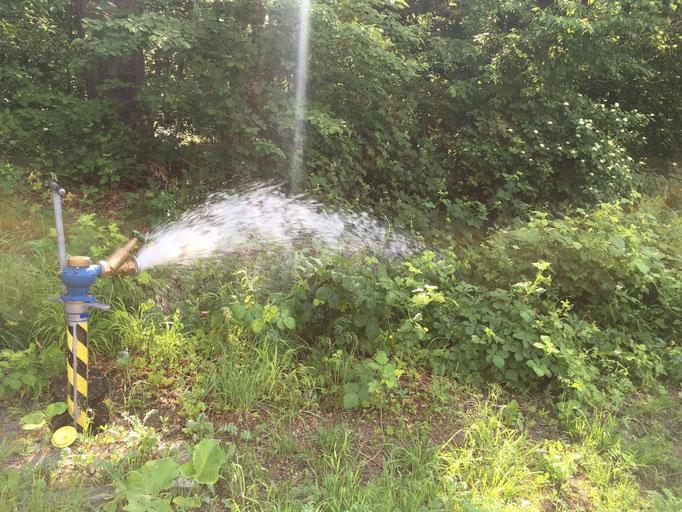 Endstränge einer Leitung müssen regelmäßig gespült werden, da das Wasser in der Leitung still steht