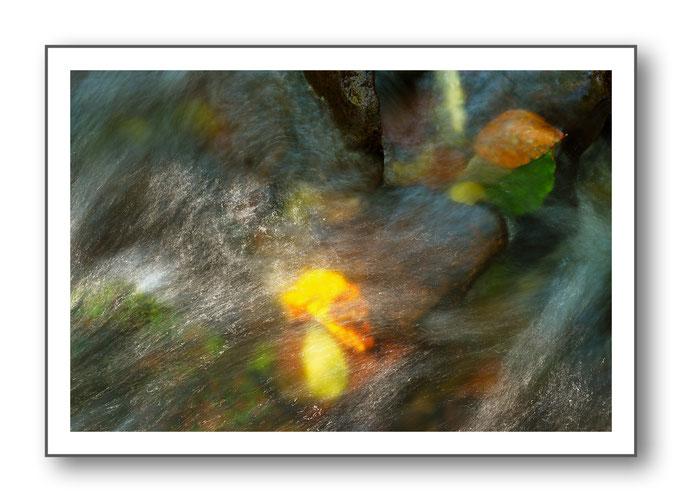 Foto Natur Wasser 5