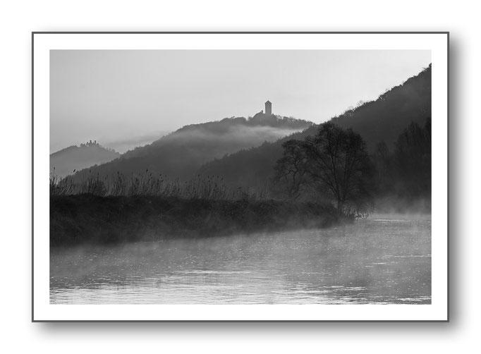 Foto Natur Schwarz - Weiss 18