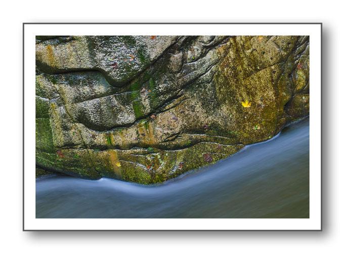 Foto Natur Wasser 10
