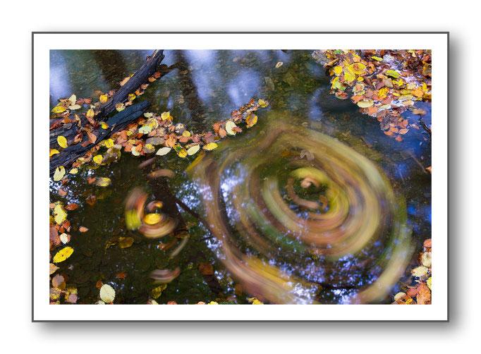Foto Natur Wasser 8