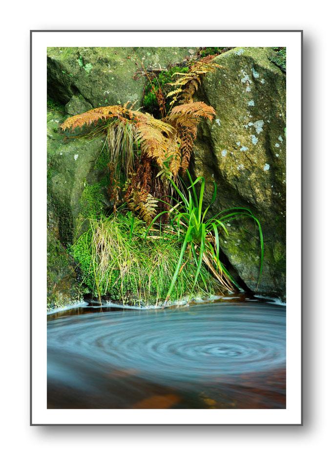 Foto Natur Wasser 13