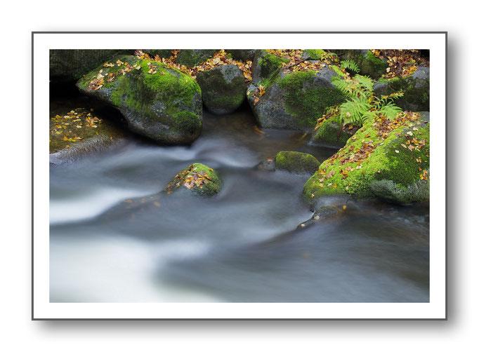 Foto Natur Wasser 9