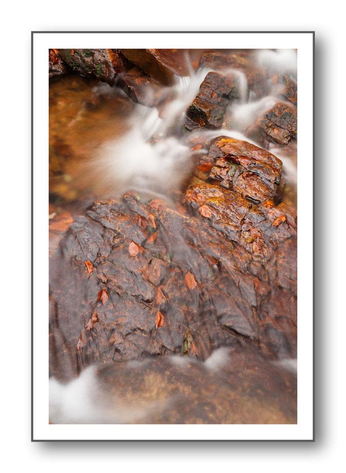 Foto Natur Wasser 16