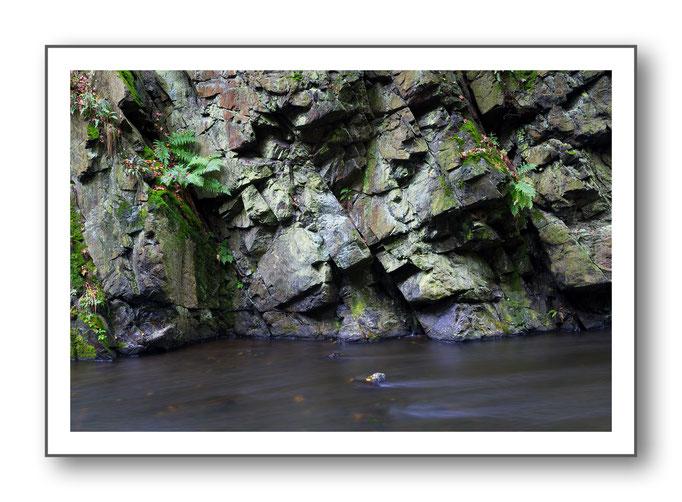 Foto Natur Wasser 12