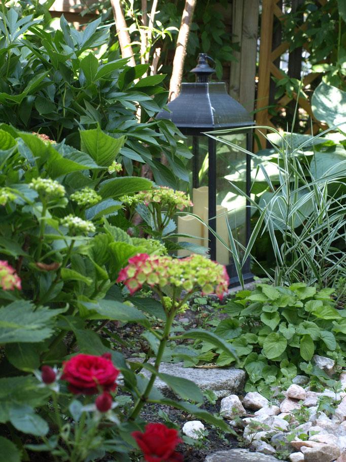 Pension Harmonie Garten